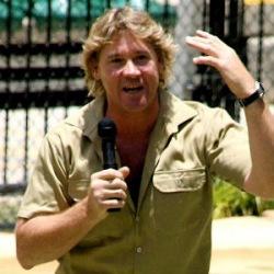 Steve Irwin, Łowca krokodyli